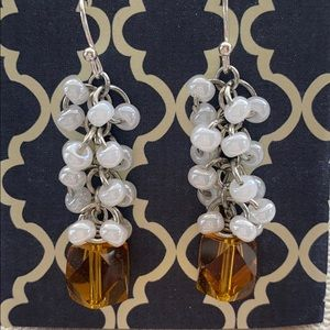 Beautiful Beaded Dangle Earrings